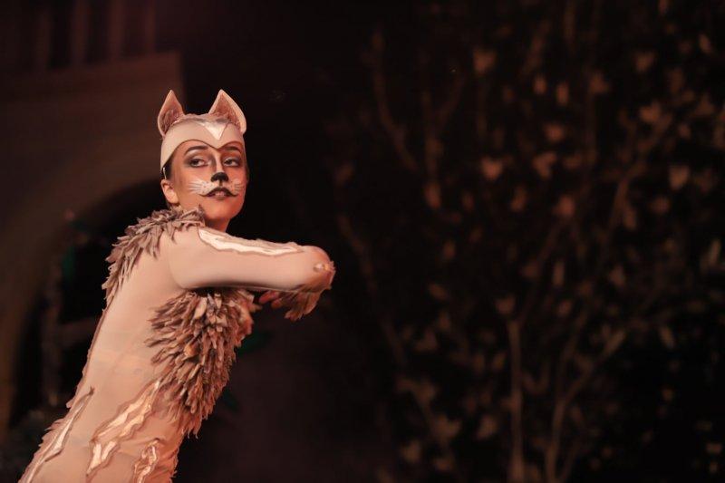 PETAR I VUK: Kad sam čuo da je balet smračilo mi se, ali na kraju je ispalo bolje nego išta!